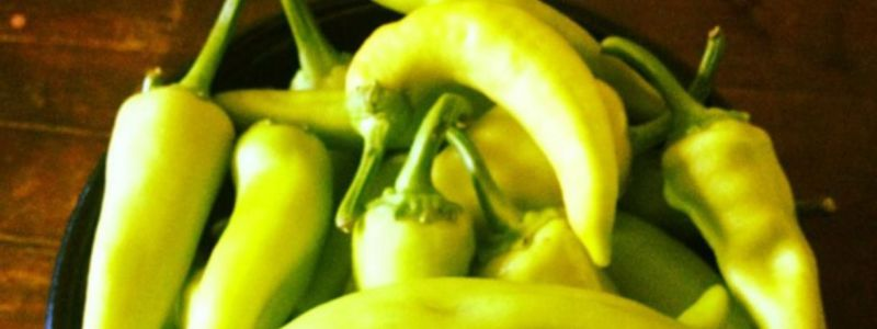 Do You Know When To Pick Banana Peppers Use These Helpful