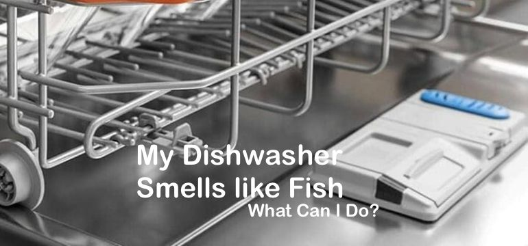 My Dishwasher Smells like Fish  What Can I Do?