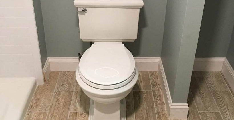 Kohler Memoirs Stately Toilet Review
